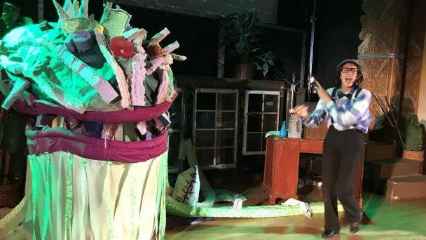 Little Shop of Horrors photo 1