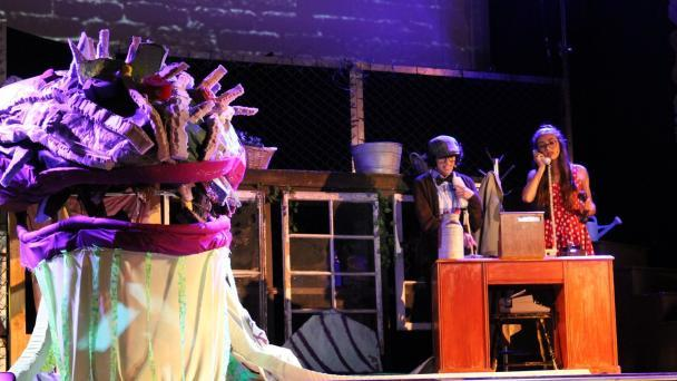 Little Shop of Horrors photo 12