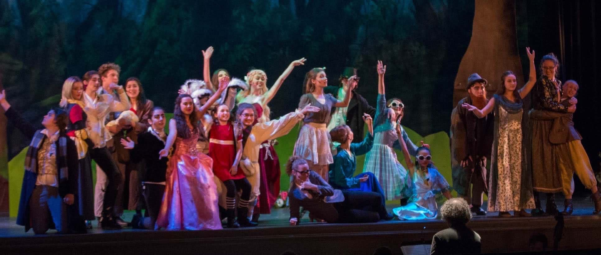 Tomorrow Youth Rep Banner image, from Into the Woods, 2016